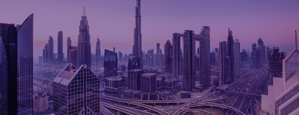 DRUID AI partners with Evolvant to deploy automation solutions in UAE